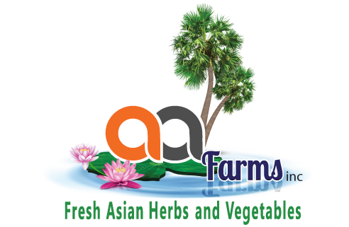 1_about-us-fresh-asian-herbs-aa-farms-logo-